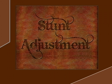 Stunt Adjustment